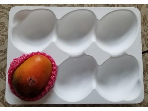 6,7,8,9粒裝水果盤( 橢圓形)